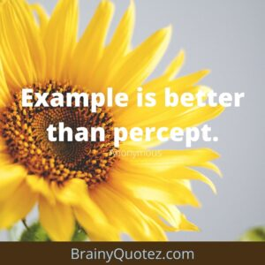 Quotes On Importance Of English-BrainyQuotes