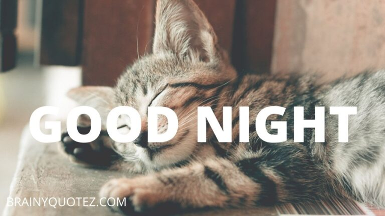 111 Relaxing Funny and Inspirational Good Night Messages